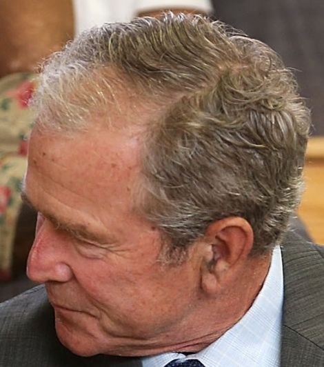 Ten Years On George W Bush S Hair