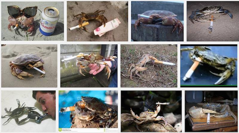 Crabs Smoking Cigarettes: An Unfortunate Trend