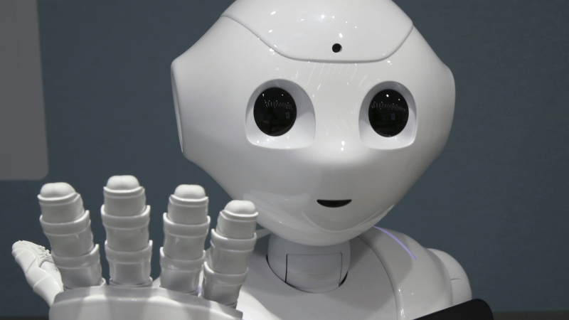 Japanese Robot Owners Reminded Not To Fuck Their Robots