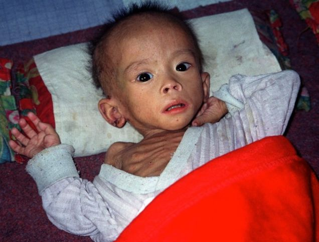 north korea famine essay North korea, for years on the edge of famine, have crossed the boundary, and dropped into the dark abyss food is rationed to one-fifth the necessary amount for survival, up to 5 million people could starve to death within the year, and 80,000 children are in imminent peril of starvation (unicef.