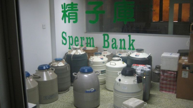 спермобанк фото