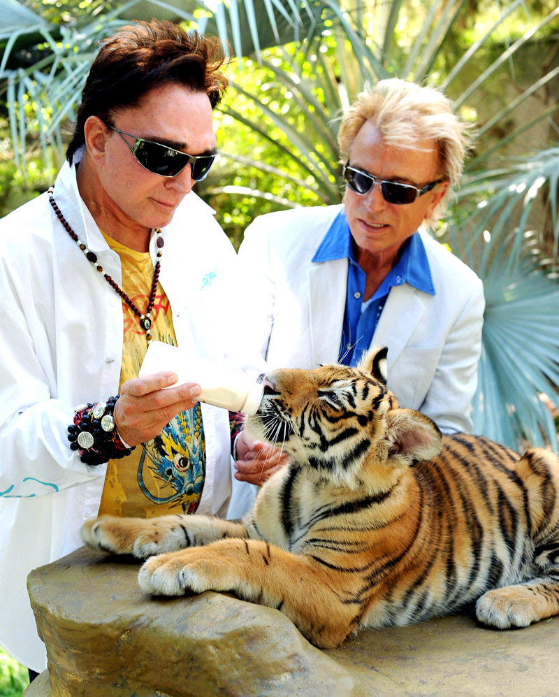 from Christian are siegfried and roy gay