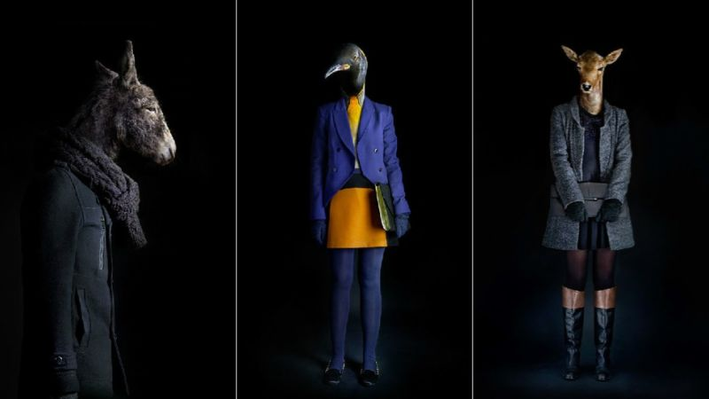 """Képtalálat a következőre: """"progressive fashionable"""""""