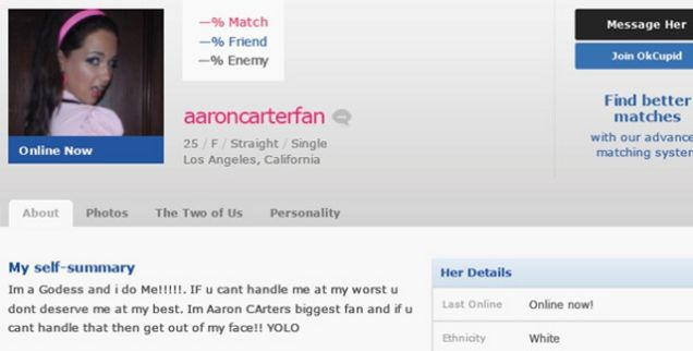 What We Can Learn From the Worst Online Dating Profile in the World