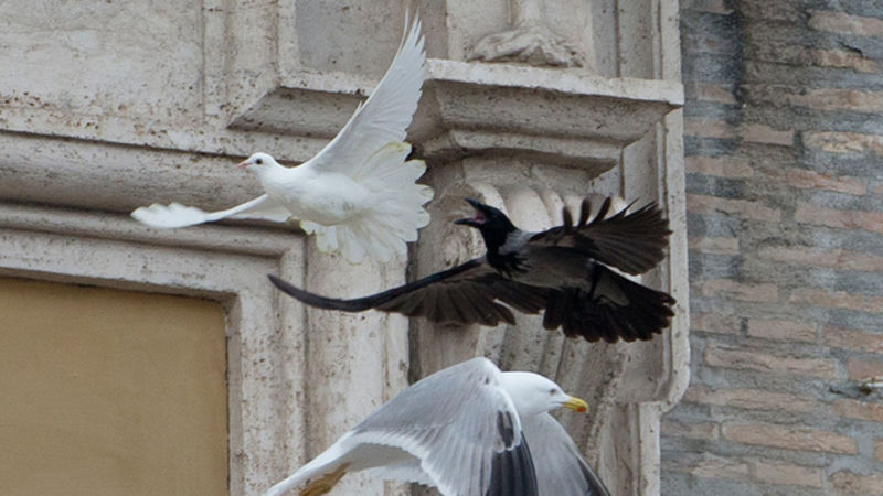 Evil Triumphs Satanic Birds Attack Popes Peace Doves