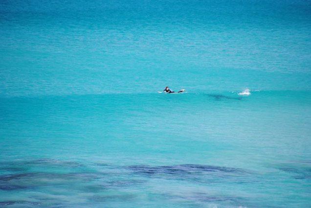 Incredible Photos Show Surfer Barely Escaping Shark AHHHHHHHHHHHHH
