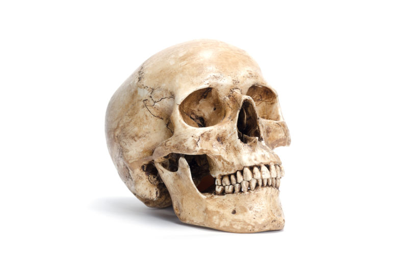 hamlet yorck s skull Check out the solution for: yorick's skull or hamlet's sword crossword cluethis crossword clue belongs to the usa today crossword february 13 2017 answers our.