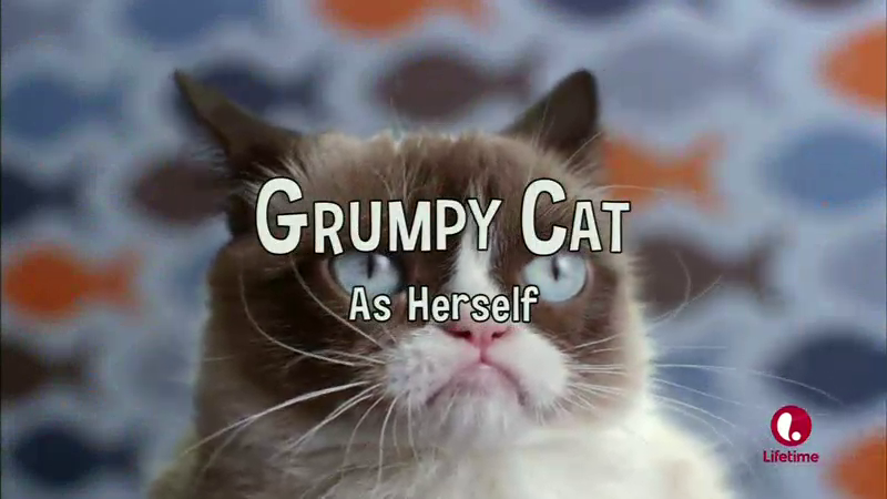 Aubrey plazas igrumpy cati movie so much worse than it wants to be hopefully one day tardar sauce the grumpy cat will gather up her strength to rebel against all those who allowed this movie to be made thecheapjerseys Choice Image