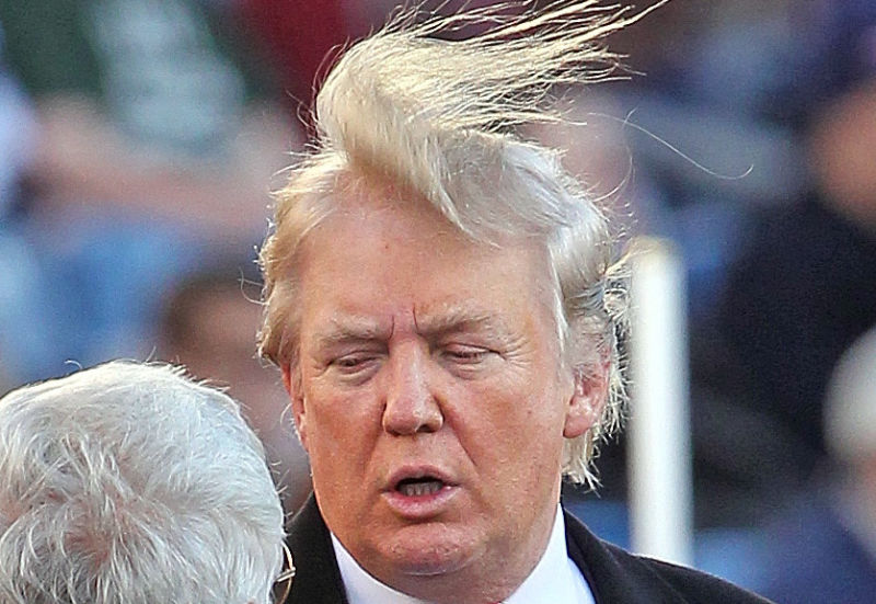 Bildresultat för donald trump hair