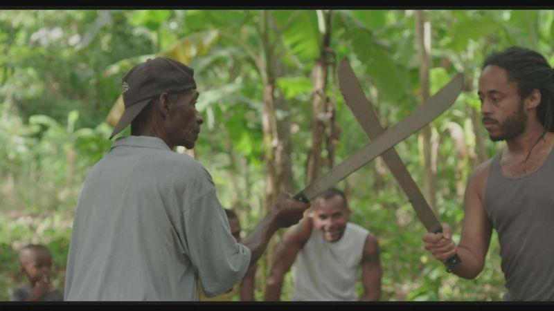 Taking machetes through customs?