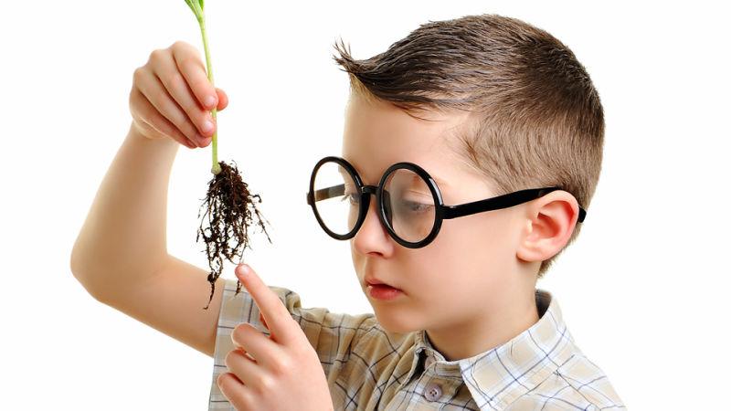 Cómo fomentar el talento de los niños: once consejos básicos