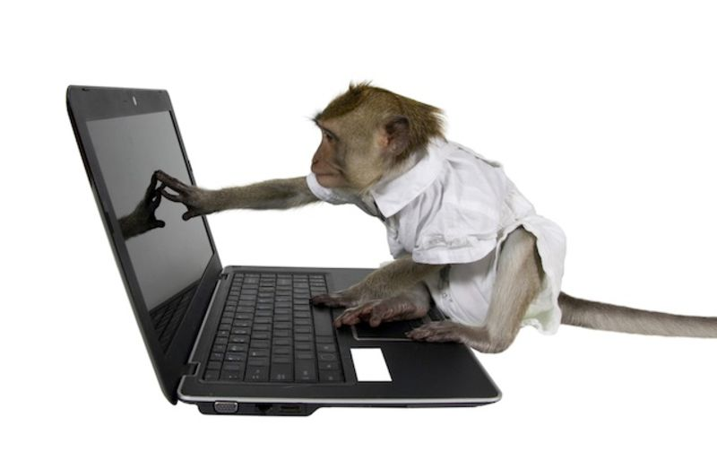 Image result for monkey writing shakespeare