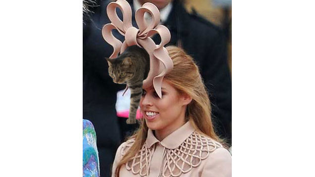 Everyone s photoshopping weird stuff coming out of Beatrice s hat! The hole  in the middle is the perfect place to shove the internet s collective  weirdness. 98e2e9cbc69