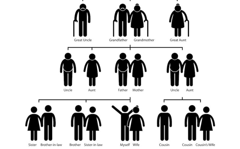 black family structure