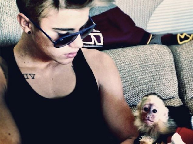 Zookeeper: Justin Bieber Left His Illegal Monkey Frightened