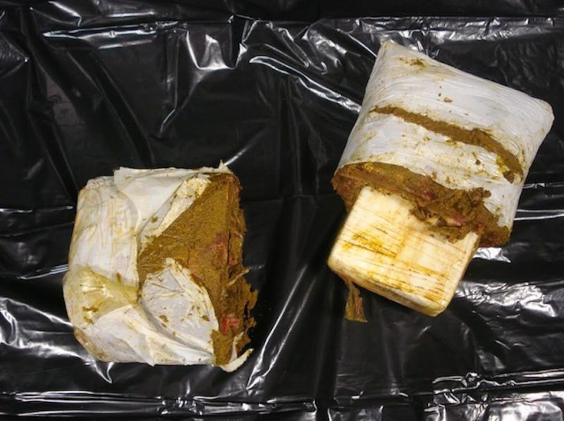 Top 13 Cases of Drugs Hidden in Food - Immigroup - We Are