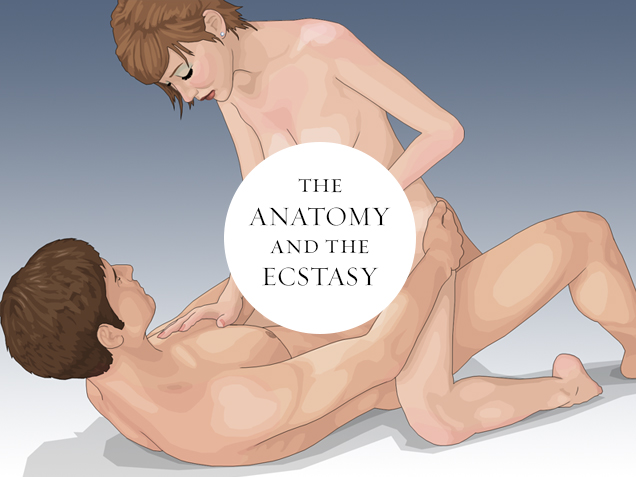 Illustrated sex acts